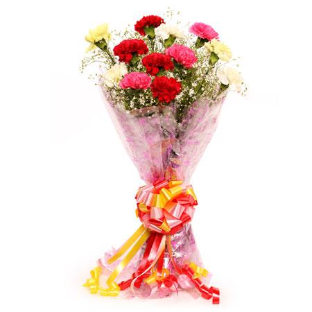 10 mix carnation