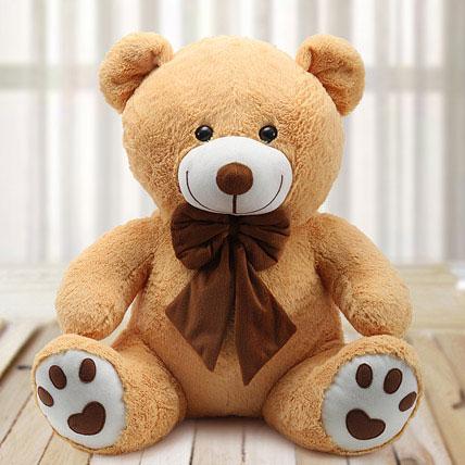 cuddly love teddy